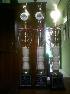 Piala dari 3 kategori